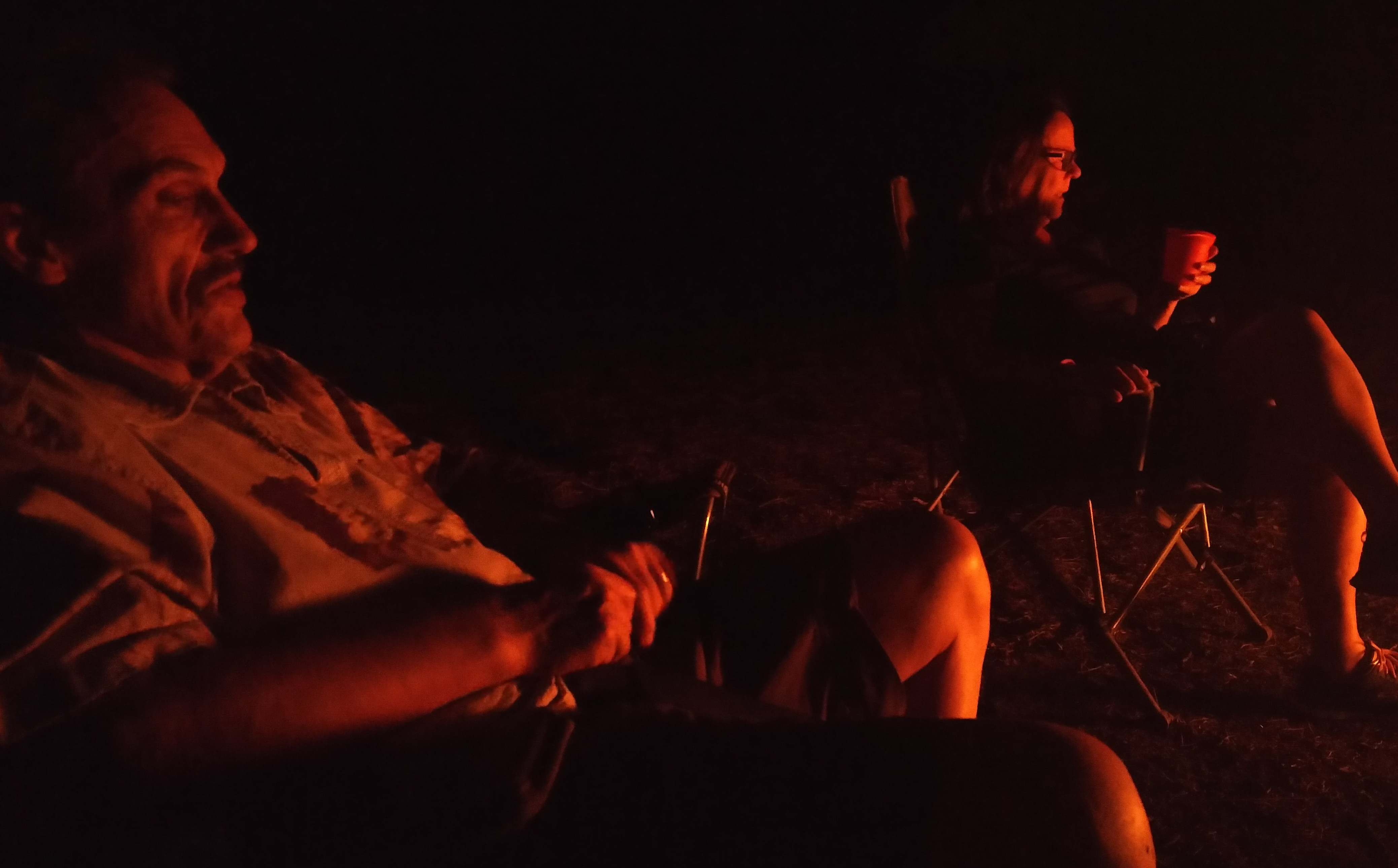 elefantmote_pa_roys_camping